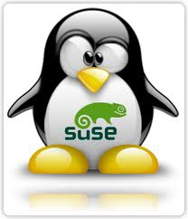 suse-linux-tux-open-source-easypos-software-opensuse-grub2-plymouth-unix-infrastructuur